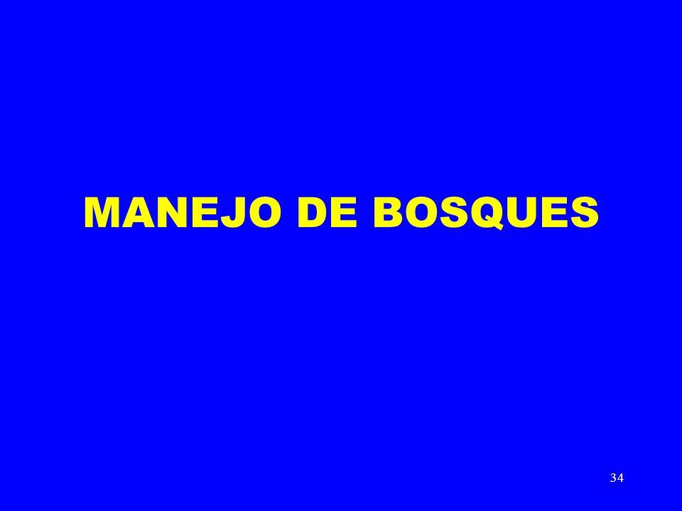 34 MANEJO DE BOSQUES