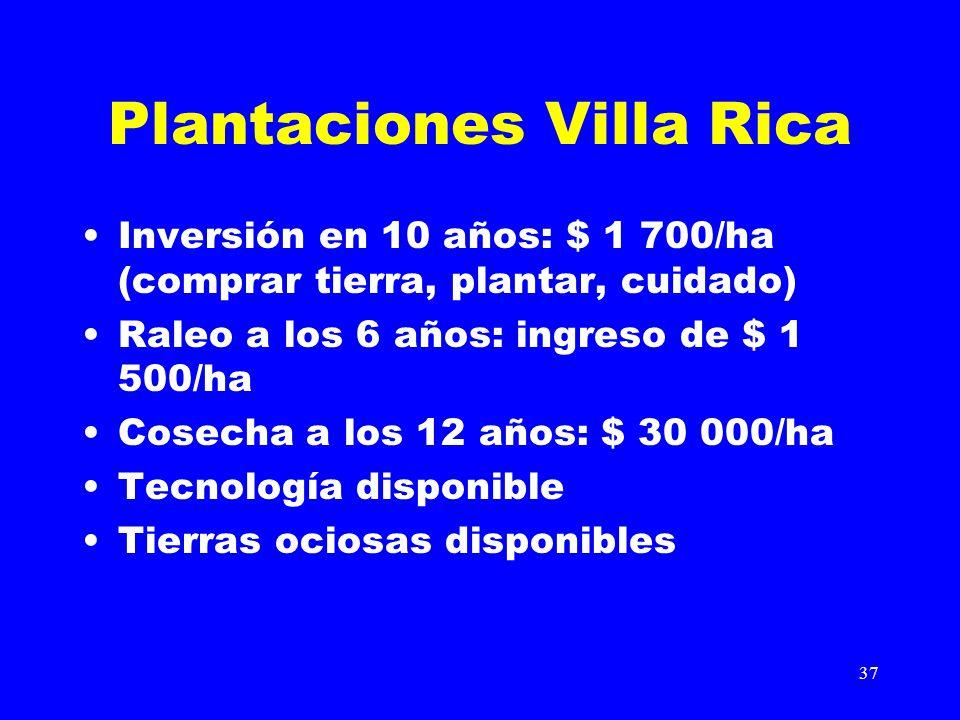 37 Plantaciones Villa Rica Inversión en 10 años: $ 1 700/ha (comprar tierra, plantar, cuidado) Raleo a los 6 años: ingreso de $ 1 500/ha Cosecha a los