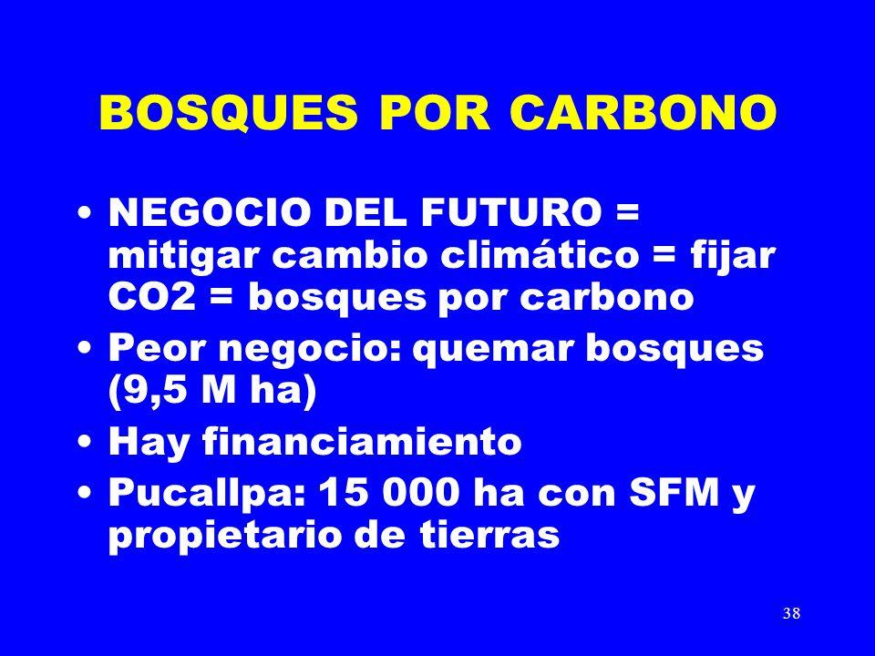 38 BOSQUES POR CARBONO NEGOCIO DEL FUTURO = mitigar cambio climático = fijar CO2 = bosques por carbono Peor negocio: quemar bosques (9,5 M ha) Hay fin