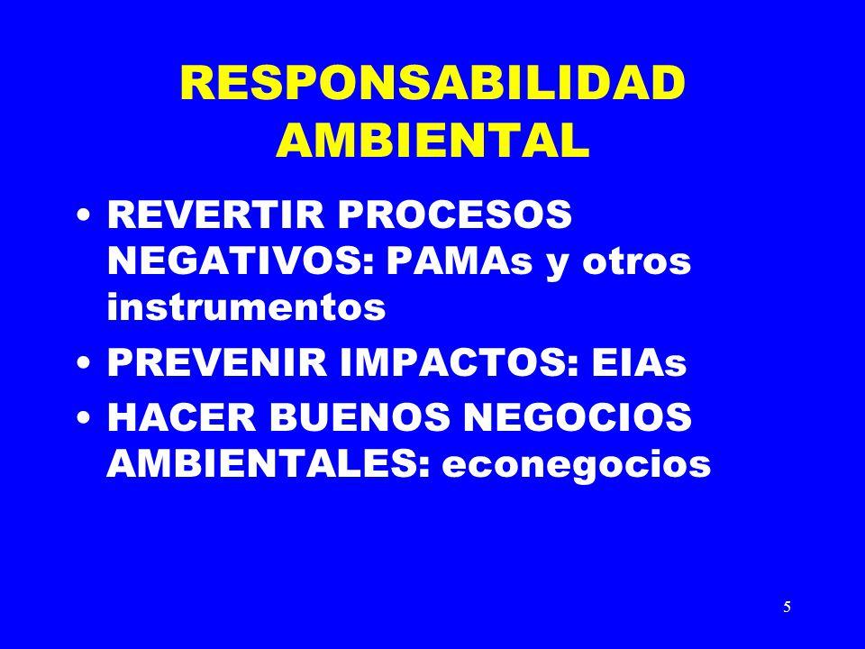 5 RESPONSABILIDAD AMBIENTAL REVERTIR PROCESOS NEGATIVOS: PAMAs y otros instrumentos PREVENIR IMPACTOS: EIAs HACER BUENOS NEGOCIOS AMBIENTALES: econego