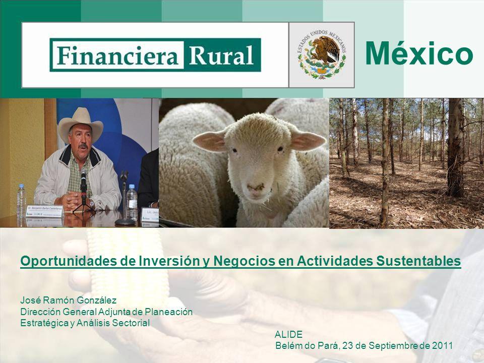 1 Oportunidades de Inversión y Negocios en Actividades Sustentables José Ramón González Dirección General Adjunta de Planeación Estratégica y Análisis Sectorial ALIDE Belém do Pará, 23 de Septiembre de 2011 México