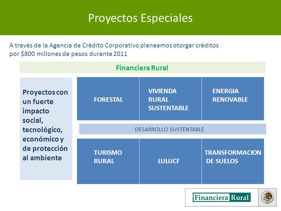 3 Proyectos Especiales Financiera Rural Proyectos con un fuerte impacto social, tecnológico, económico y de protección al ambiente FORESTAL ENERGIA RENOVABLE PESCA PRODUCTOS ORGANICOS TURISMO RURAL DESARROLLO SUSTENTABLE A través de la Agencia de Crédito Corporativo planeamos otorgar créditos por $800 millones de pesos durante 2011 FORESTAL VIVIENDA RURAL SUSTENTABLE ENERGIA RENOVABLE FORESTAL ENERGIA RENOVABLE PESCA PRODUCTOS ORGANICOS TURISMO RURAL LULUCF TRANSFORMACION DE SUELOS