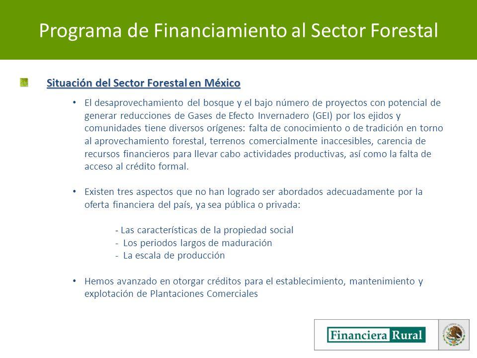Programa de Financiamiento al Sector Forestal Situación del Sector Forestal en México Situación del Sector Forestal en México El desaprovechamiento del bosque y el bajo número de proyectos con potencial de generar reducciones de Gases de Efecto Invernadero (GEI) por los ejidos y comunidades tiene diversos orígenes: falta de conocimiento o de tradición en torno al aprovechamiento forestal, terrenos comercialmente inaccesibles, carencia de recursos financieros para llevar cabo actividades productivas, así como la falta de acceso al crédito formal.