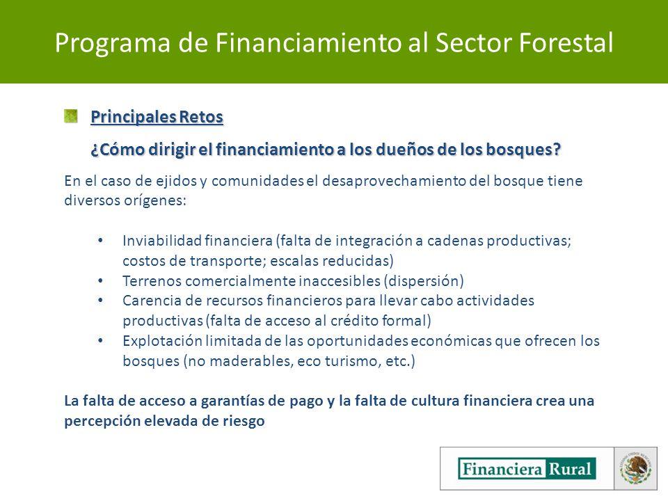 Programa de Financiamiento al Sector Forestal Principales Retos ¿Cómo dirigir el financiamiento a los dueños de los bosques.