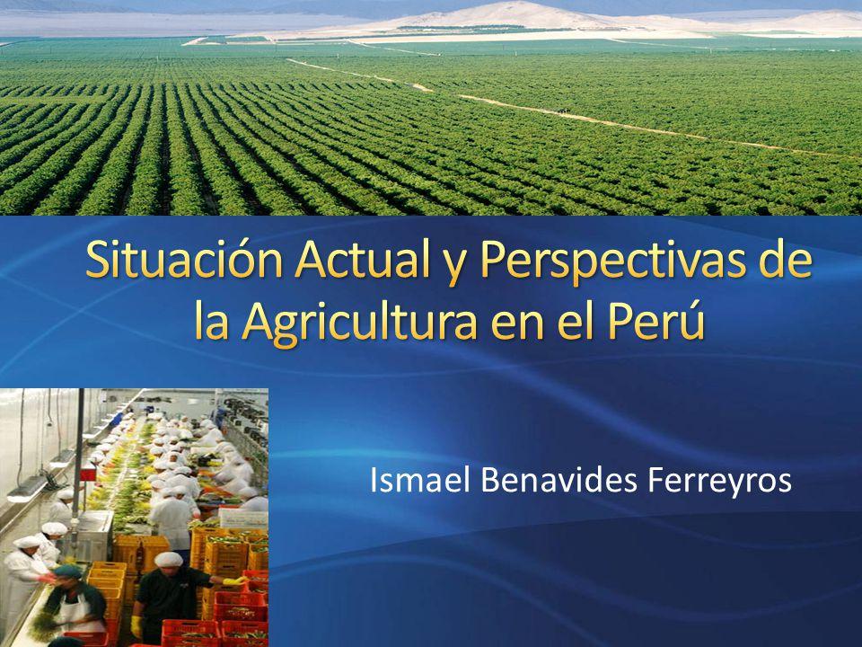 En el Perú el sector agrícola es fundamental en el desarrollo económico y en la reducción de la pobreza.