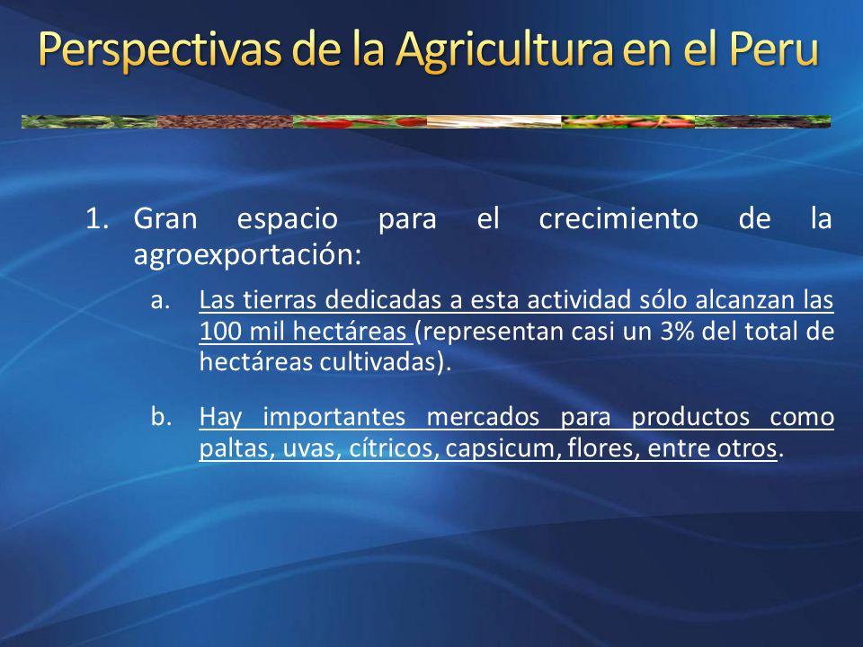 1.Gran espacio para el crecimiento de la agroexportación: a.Las tierras dedicadas a esta actividad sólo alcanzan las 100 mil hectáreas (representan ca