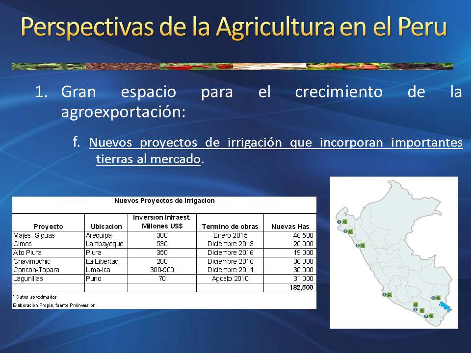 1.Gran espacio para el crecimiento de la agroexportación: f. Nuevos proyectos de irrigación que incorporan importantes tierras al mercado.