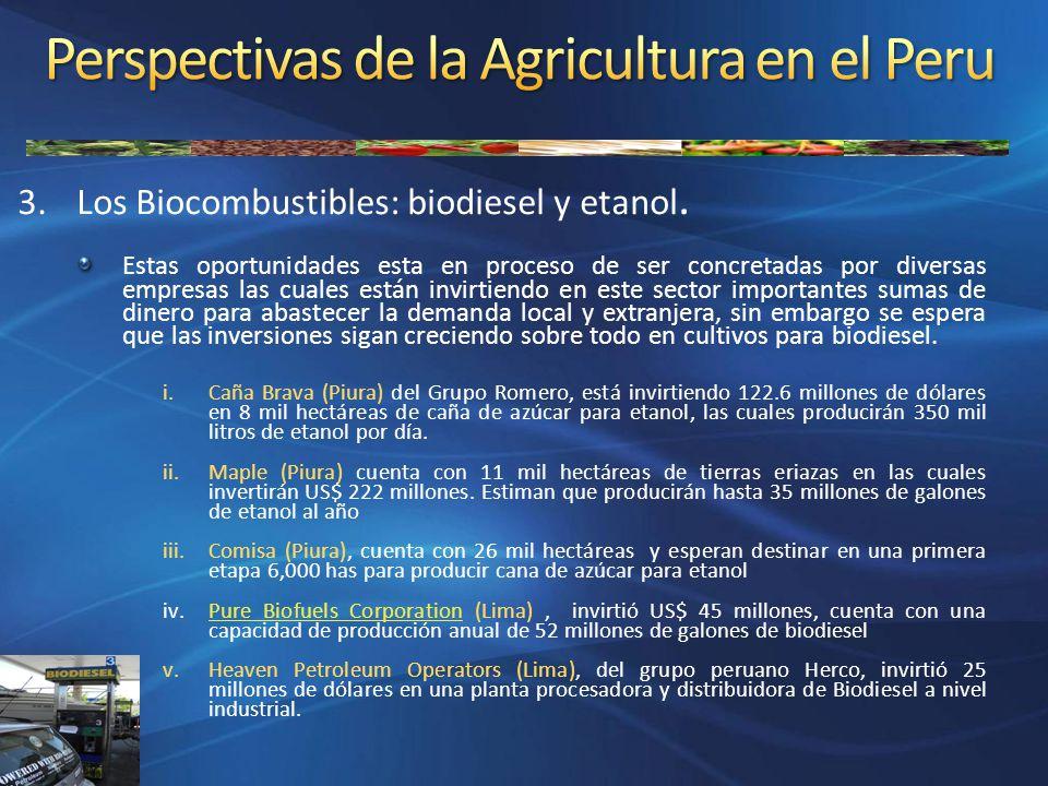 3.Los Biocombustibles: biodiesel y etanol. Estas oportunidades esta en proceso de ser concretadas por diversas empresas las cuales están invirtiendo e