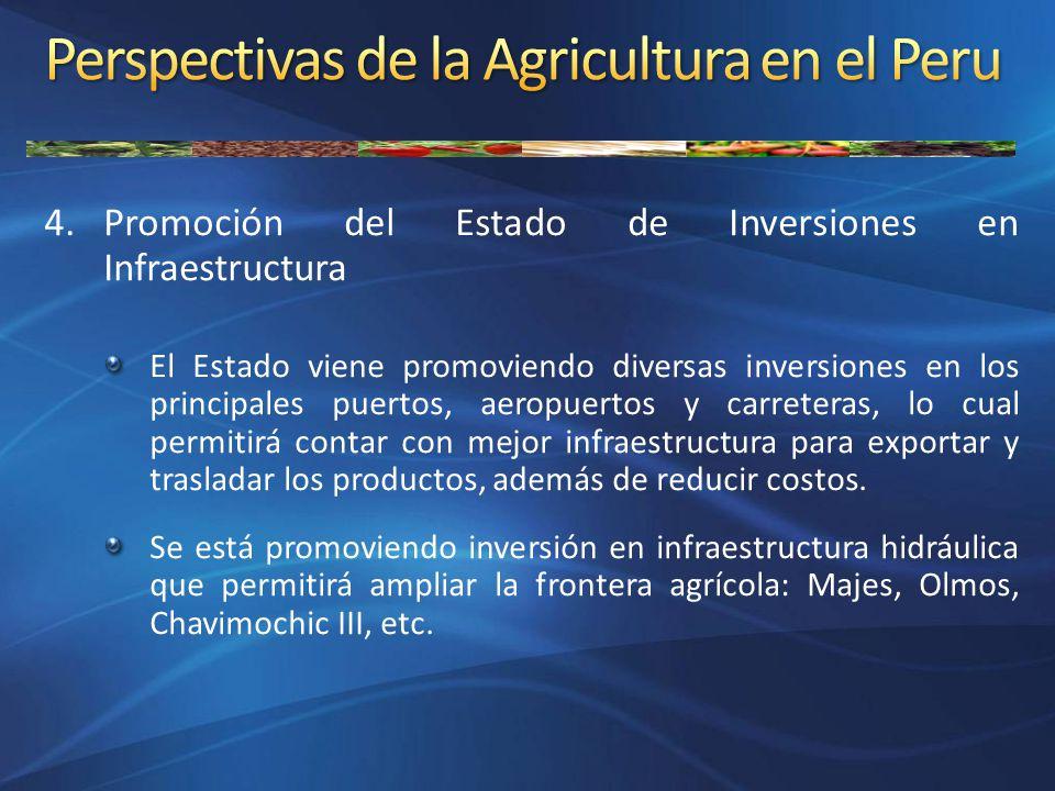 4.Promoción del Estado de Inversiones en Infraestructura El Estado viene promoviendo diversas inversiones en los principales puertos, aeropuertos y ca