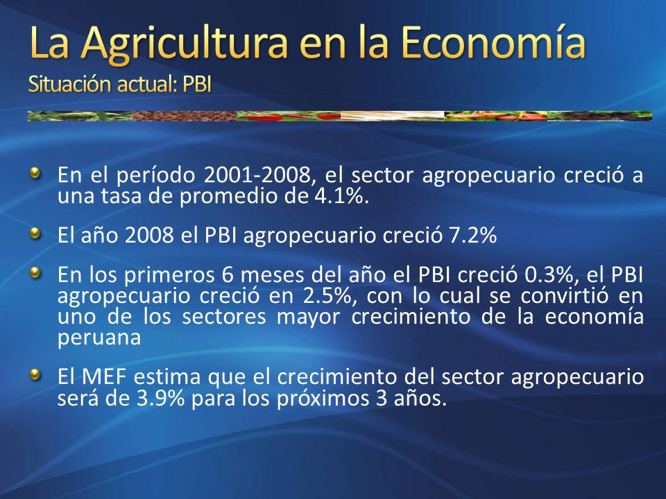 En el período 2001-2008, el sector agropecuario creció a una tasa de promedio de 4.1%. El año 2008 el PBI agropecuario creció 7.2% En los primeros 6 m
