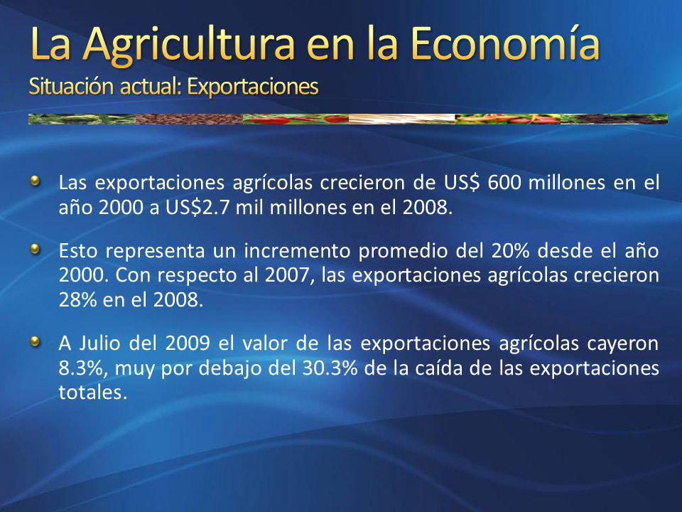 Las exportaciones agrícolas crecieron de US$ 600 millones en el año 2000 a US$2.7 mil millones en el 2008. Esto representa un incremento promedio del