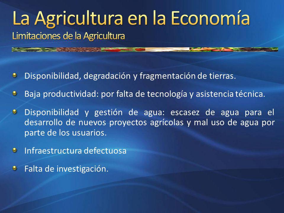 Disponibilidad, degradación y fragmentación de tierras. Baja productividad: por falta de tecnología y asistencia técnica. Disponibilidad y gestión de
