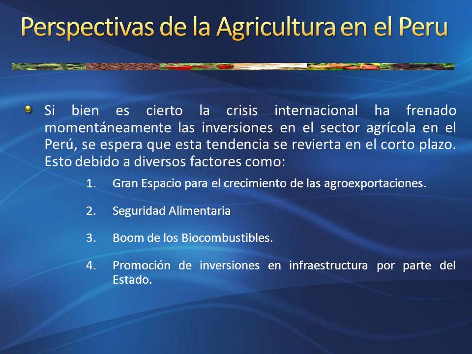 Si bien es cierto la crisis internacional ha frenado momentáneamente las inversiones en el sector agrícola en el Perú, se espera que esta tendencia se