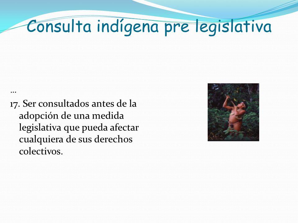 Consulta indígena pre legislativa … 17. Ser consultados antes de la adopción de una medida legislativa que pueda afectar cualquiera de sus derechos co
