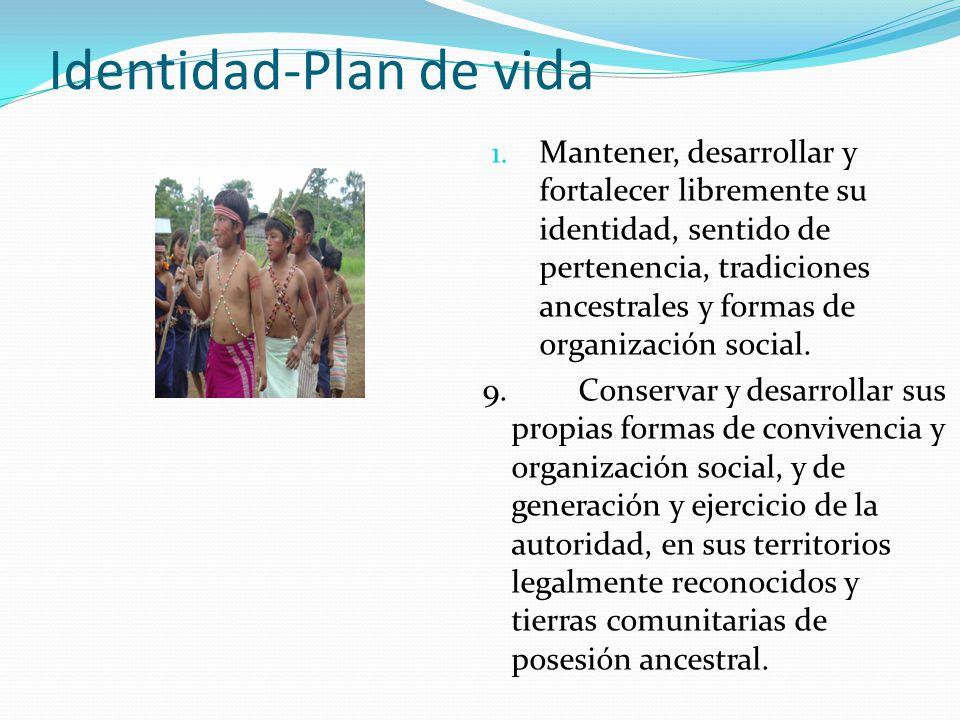 Identidad-Plan de vida 1. Mantener, desarrollar y fortalecer libremente su identidad, sentido de pertenencia, tradiciones ancestrales y formas de orga