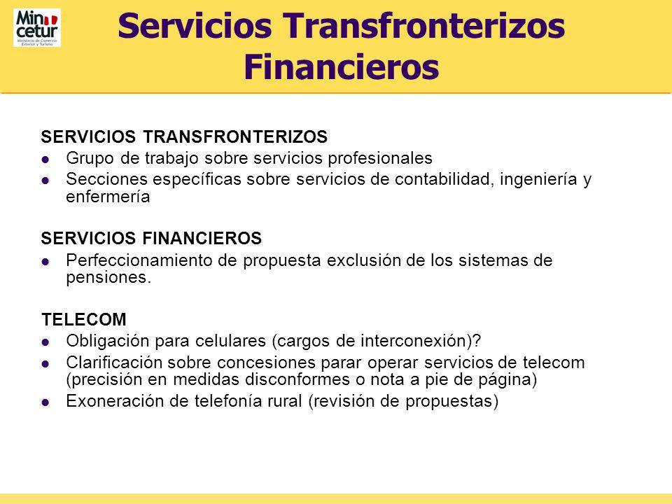 Servicios Transfronterizos Financieros SERVICIOS TRANSFRONTERIZOS Grupo de trabajo sobre servicios profesionales Secciones específicas sobre servicios