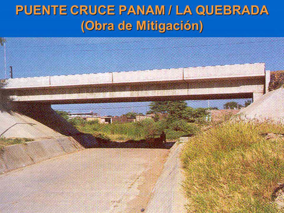 PUENTE CRUCE PANAM / LA QUEBRADA (Obra de Mitigación)
