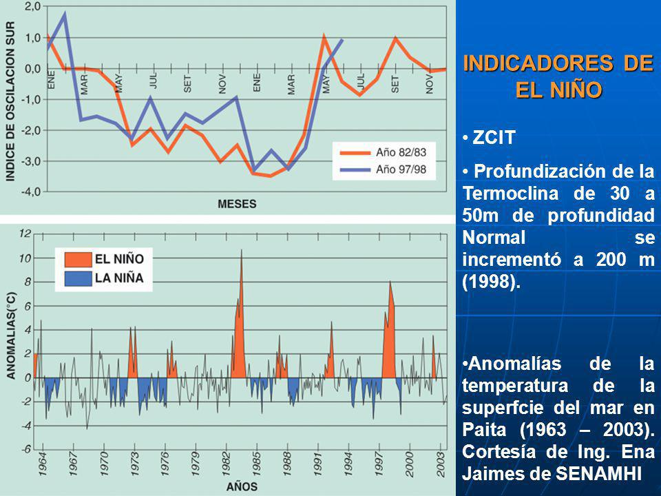 INDICADORES DE EL NIÑO ZCIT Profundización de la Termoclina de 30 a 50m de profundidad Normal se incrementó a 200 m (1998). Anomalías de la temperatur