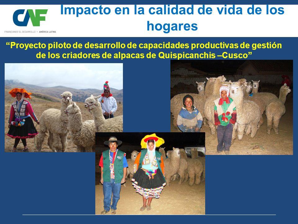 Impacto en la calidad de vida de los hogares Proyecto piloto de desarrollo de capacidades productivas de gestión de los criadores de alpacas de Quispicanchis –Cusco