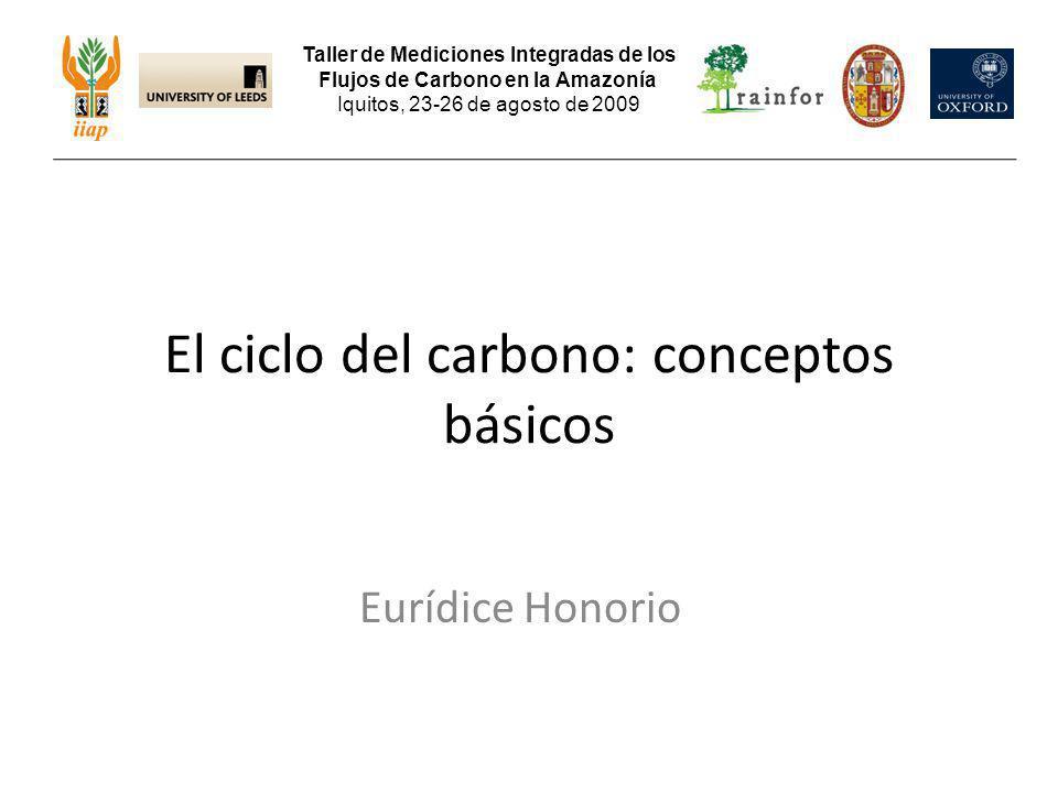 Eurídice Honorio El ciclo del carbono: conceptos básicos Taller de Mediciones Integradas de los Flujos de Carbono en la Amazonía Iquitos, 23-26 de ago