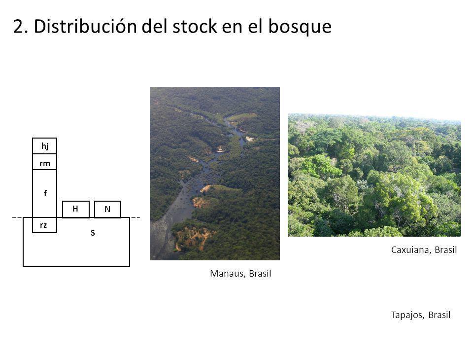 hj rz f rm S H N 2. Distribución del stock en el bosque Manaus, Brasil Caxuiana, Brasil Tapajos, Brasil