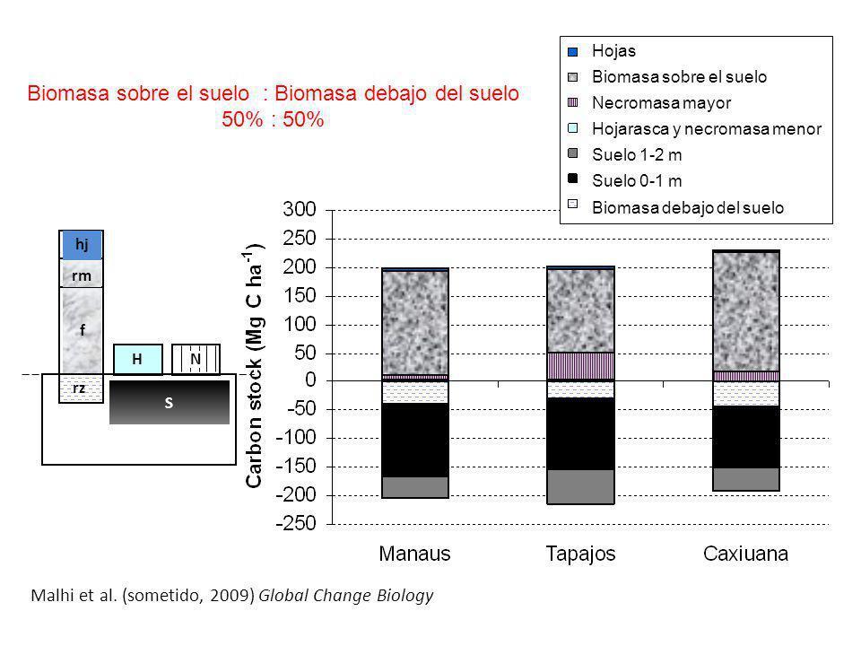 hj rz f rm S H N Hojas Biomasa sobre el suelo Necromasa mayor Hojarasca y necromasa menor Suelo 1-2 m Suelo 0-1 m Biomasa debajo del suelo Malhi et al