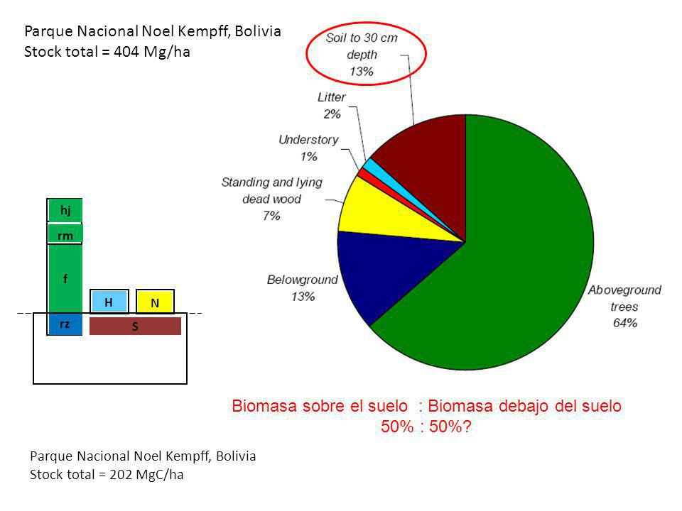 Parque Nacional Noel Kempff, Bolivia Stock total = 404 Mg/ha hj rz f rm S H N Parque Nacional Noel Kempff, Bolivia Stock total = 202 MgC/ha Biomasa so