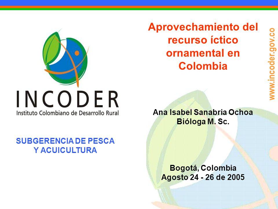 www.incoder.gov.co Aprovechamiento del recurso íctico ornamental en Colombia Ana Isabel Sanabria Ochoa Bióloga M. Sc. Bogotá, Colombia Agosto 24 - 26