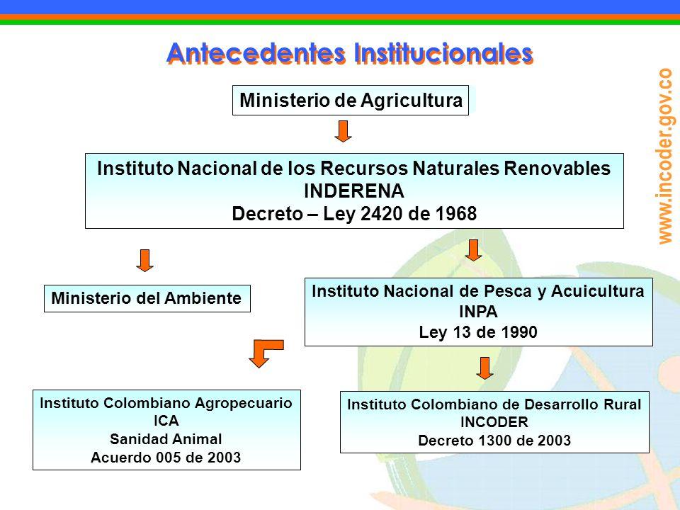 www.incoder.gov.co Antecedentes Institucionales Ministerio de Agricultura Instituto Nacional de los Recursos Naturales Renovables INDERENA Decreto – L