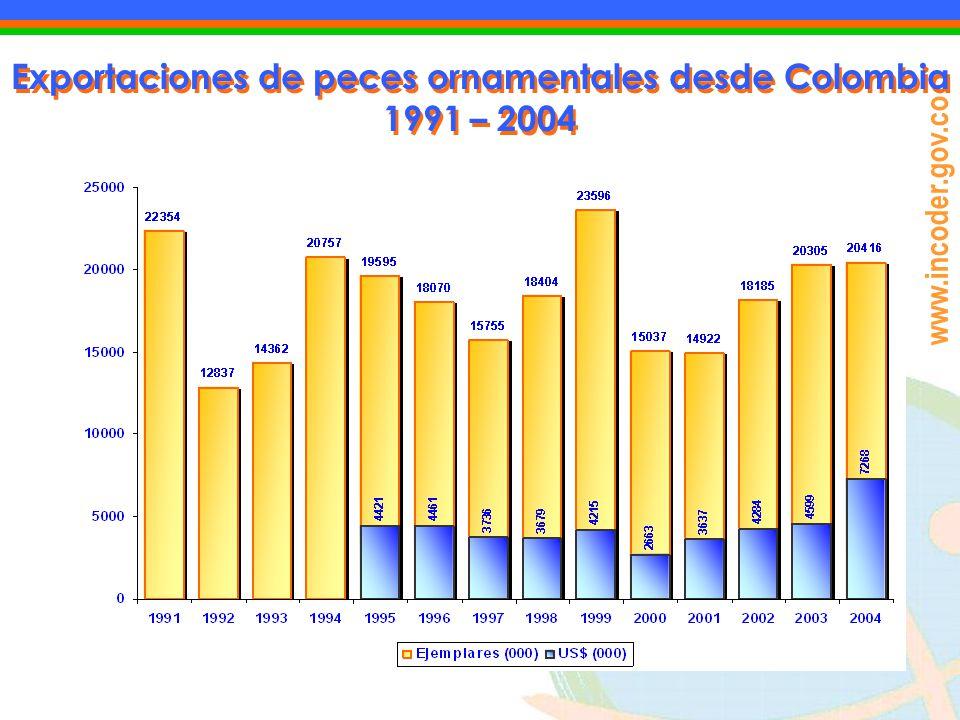 www.incoder.gov.co Exportaciones de peces ornamentales desde Colombia 1991 – 2004 Exportaciones de peces ornamentales desde Colombia 1991 – 2004