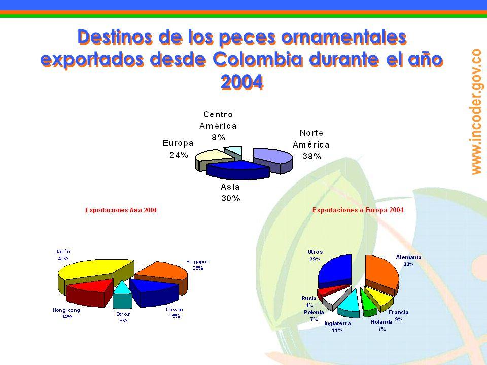www.incoder.gov.co Destinos de los peces ornamentales exportados desde Colombia durante el año 2004