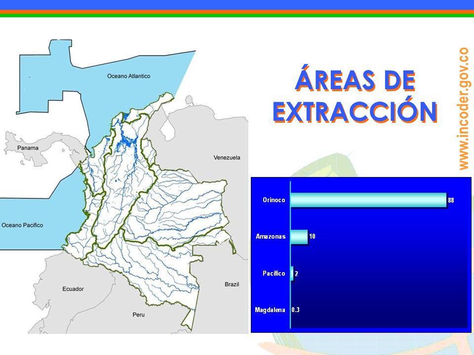 www.incoder.gov.co ÁREAS DE EXTRACCIÓN
