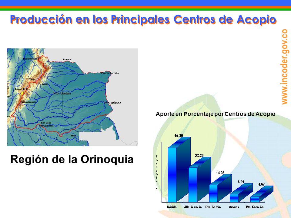 www.incoder.gov.co Producción en los Principales Centros de Acopio Aporte en Porcentaje por Centros de Acopio Región de la Orinoquia Pto. Gaitán Pto.