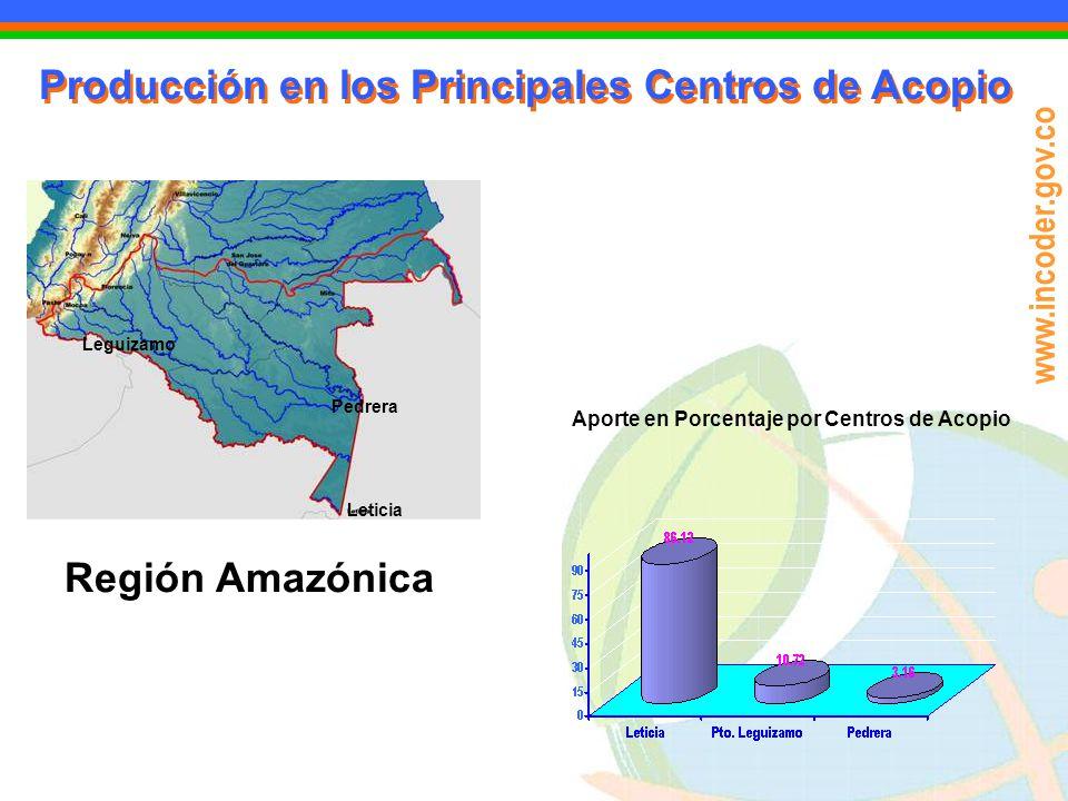 www.incoder.gov.co Producción en los Principales Centros de Acopio Leguizamo Pedrera Leticia Región Amazónica Aporte en Porcentaje por Centros de Acop