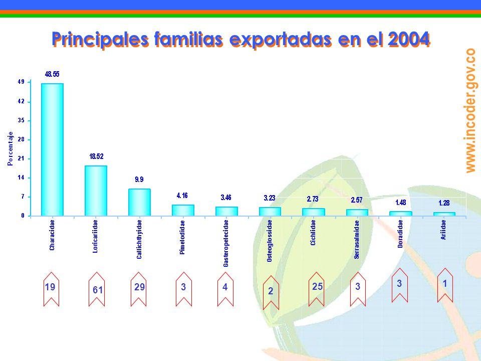 www.incoder.gov.co Principales familias exportadas en el 2004 19 61 2934 2 253 31