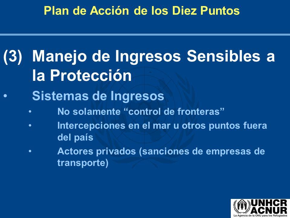 Plan de Acción de los Diez Puntos (3) Manejo de Ingresos Sensibles a la Protección Sistemas de Ingresos No solamente control de fronteras Intercepcion