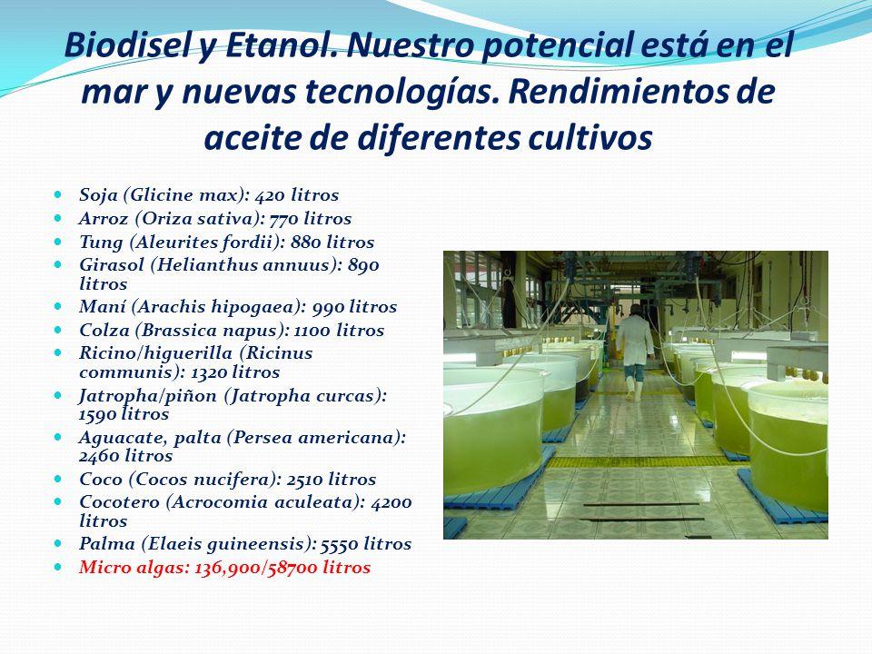 Potencial de las Energías Renovables en el Perú Solar Térmico: Todo el territorio con radiaciones entre 5.0 y 6.5 Kwh/m2-dia.