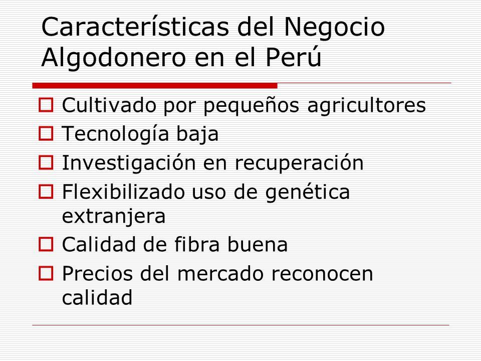 Características del Negocio Algodonero en el Perú Cultivado por pequeños agricultores Tecnología baja Investigación en recuperación Flexibilizado uso