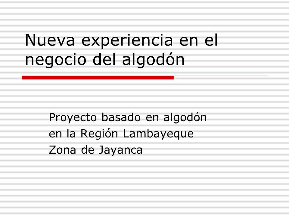 Nueva experiencia en el negocio del algodón Proyecto basado en algodón en la Región Lambayeque Zona de Jayanca