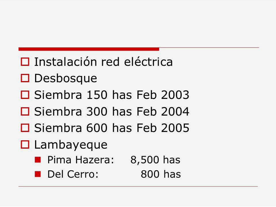 Instalación red eléctrica Desbosque Siembra 150 has Feb 2003 Siembra 300 has Feb 2004 Siembra 600 has Feb 2005 Lambayeque Pima Hazera:8,500 has Del Ce
