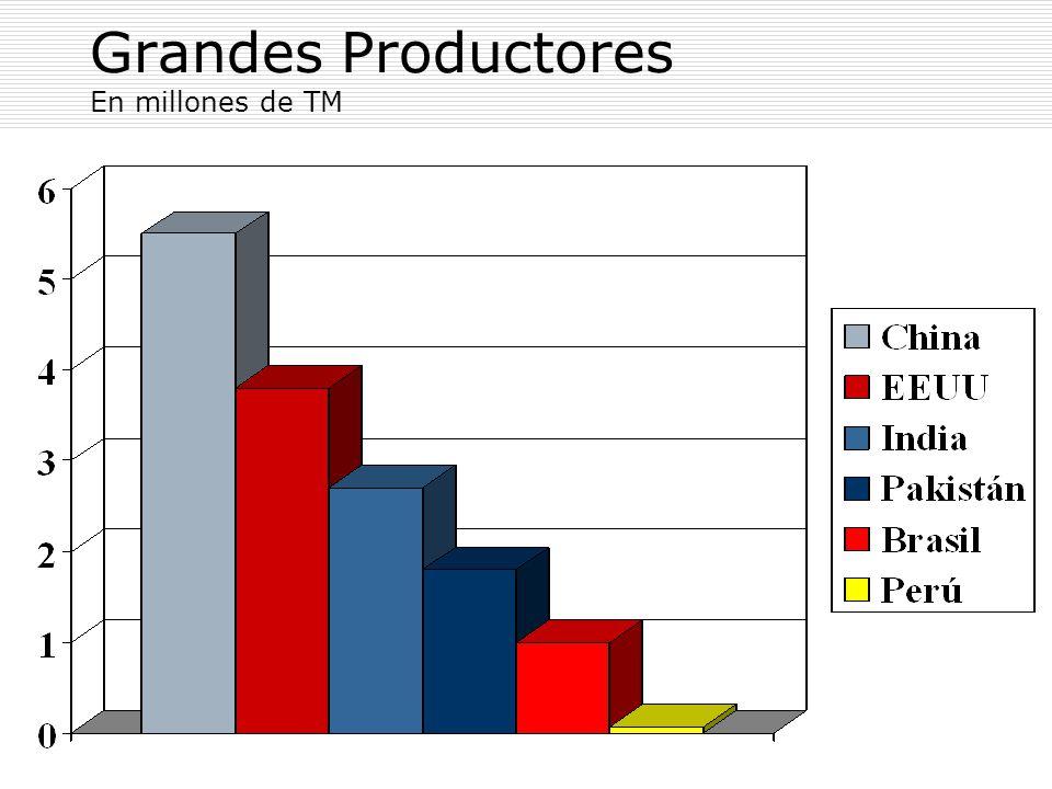 Grandes Productores En millones de TM