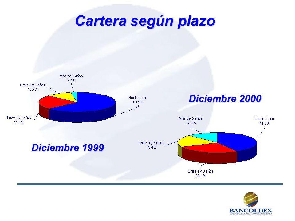Cartera según plazo Diciembre 1999 Diciembre 2000