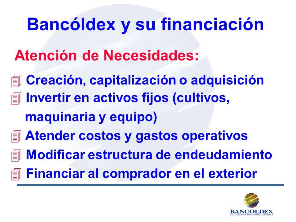 Bancóldex y su financiación Atención de Necesidades: 4 Creación, capitalización o adquisición 4 Invertir en activos fijos (cultivos, maquinaria y equipo) 4 Atender costos y gastos operativos 4 Modificar estructura de endeudamiento 4 Financiar al comprador en el exterior