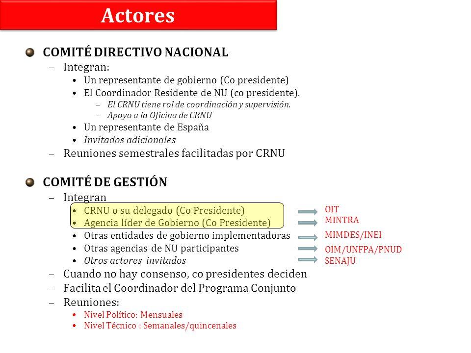 Actores COMITÉ DIRECTIVO NACIONAL –Integran: Un representante de gobierno (Co presidente) El Coordinador Residente de NU (co presidente). –El CRNU tie