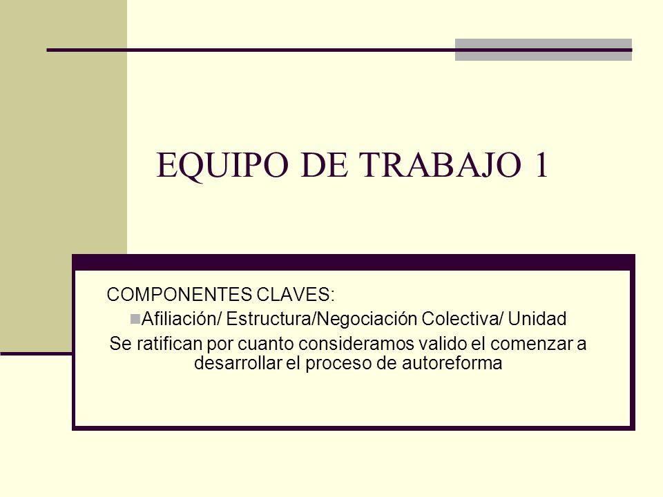 EQUIPO DE TRABAJO 1 COMPONENTES CLAVES: Afiliación/ Estructura/Negociación Colectiva/ Unidad Se ratifican por cuanto consideramos valido el comenzar a