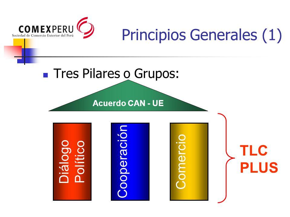 Principios Generales (1) Tres Pilares o Grupos: Diálogo Político Cooperación Comercio Acuerdo CAN - UE TLC PLUS
