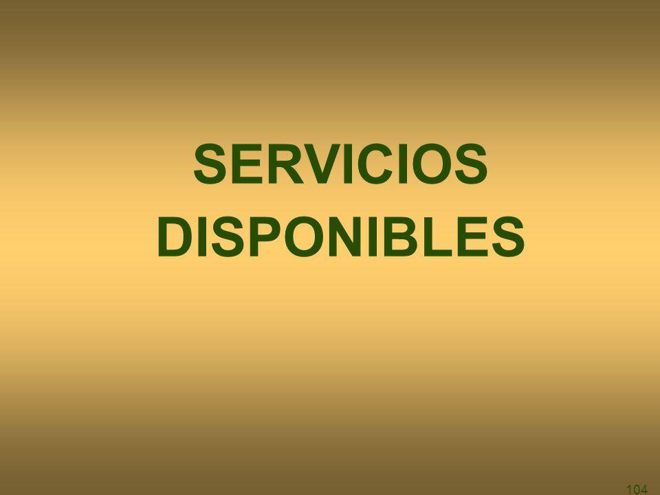 104 SERVICIOS DISPONIBLES
