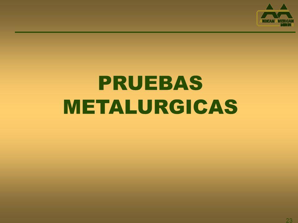 23 PRUEBAS METALURGICAS