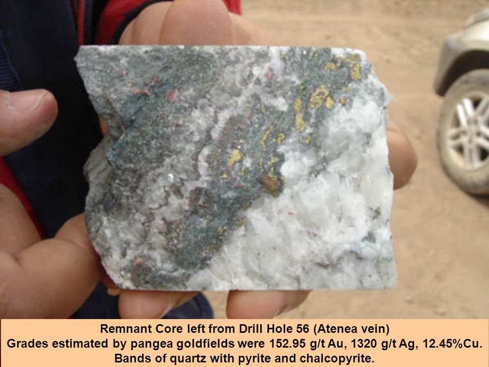 Remnant Core left from Drill Hole 56 (Atenea vein) Grades estimated by pangea goldfields were 152.95 g/t Au, 1320 g/t Ag, 12.45%Cu. Bands of quartz wi