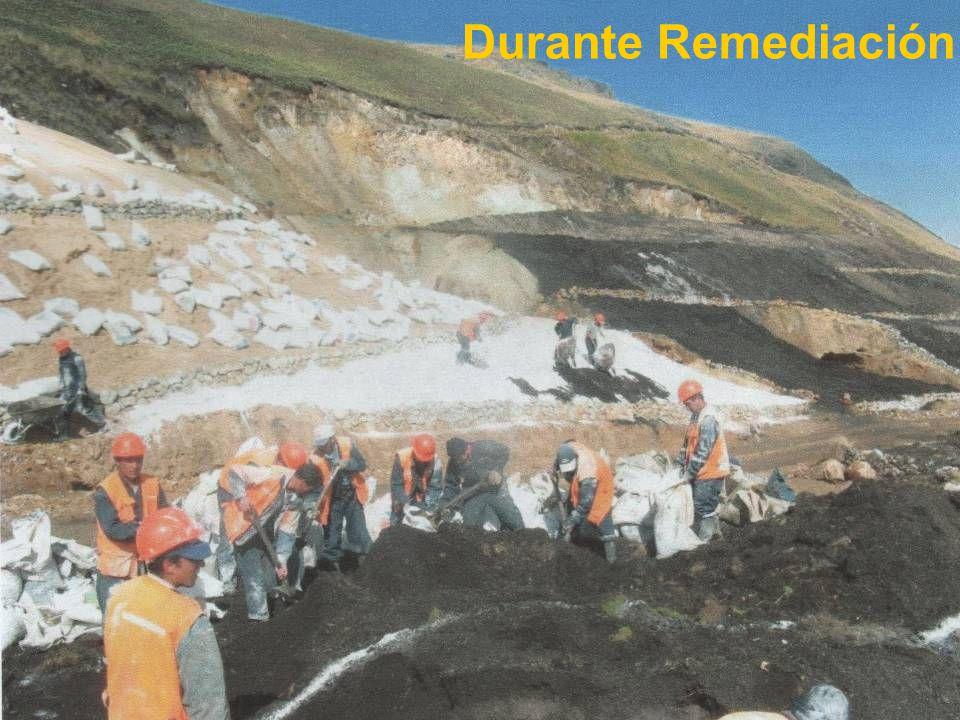 56 Durante Remediación